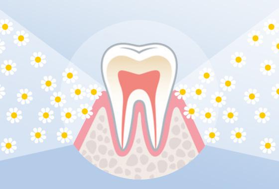 Aminomed - Natürlicher Zahnfleischschutz